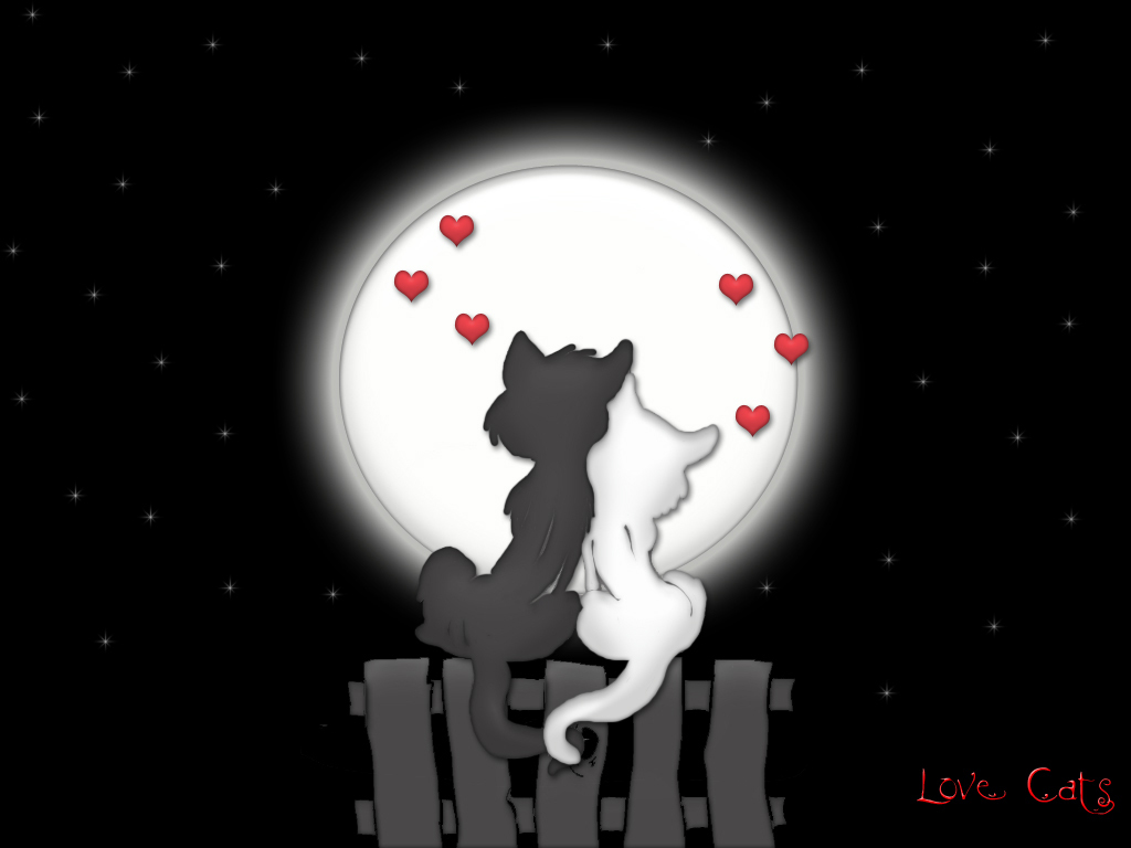 http://p4poetry.com/wp-content/uploads/2008/06/love_moon_cats1.jpg